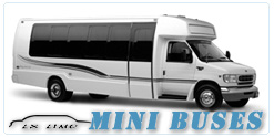 Mini Bus rental in Salt Lake City, UT