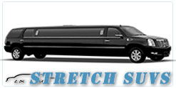 Salt Lake City wedding limo